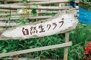 木でつくられた自然生クラブの看板。てがきの文字。