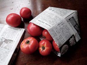 新聞紙にはいったトマト(鈴木暁子縁側ブログより