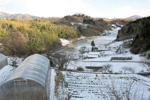 農家民宿全景。雪景色。